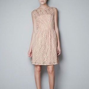 zara nude fit and flare lace dress